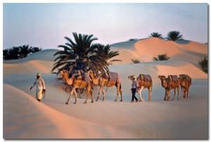photo tunisie
