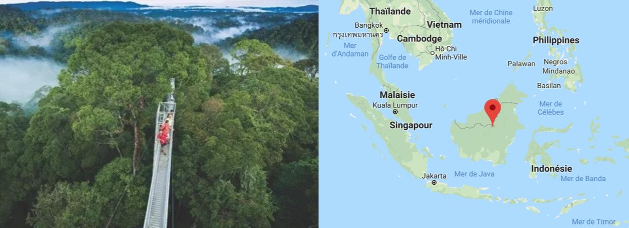 ile Borneo malaisie